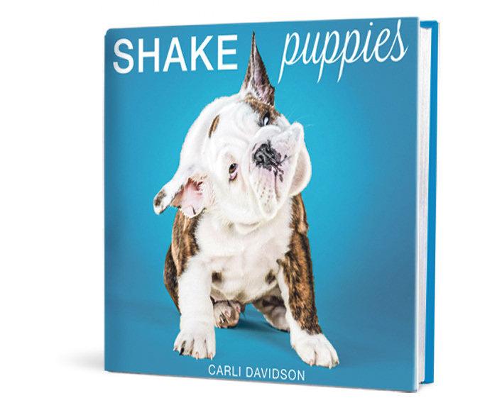 2-book-puppies-art-g7vutbir-1book-shake-puppies
