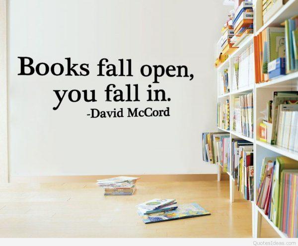 5pcs-font-b-Books-b-font-Fall-Open-You-Fall-In-font-b-Reading-b-font