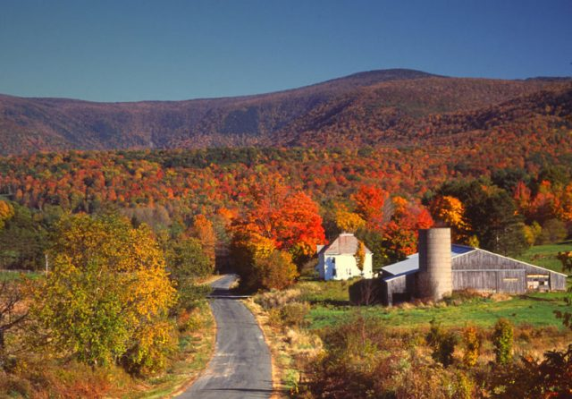 Literary Road Trip! 10 Books That Capture The Beauty Of Autumn In Massachsetts