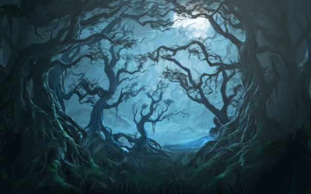 Soon You Will Be Able To Visit The Forbidden Forest…If You Dare