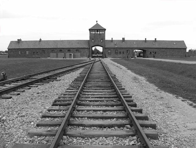 Amazon Getting Heat For Selling Books That Deny The Holocaust