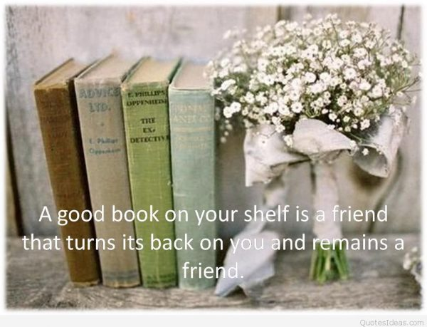 book-quotes-books-quotes-on-books-reading-hobby-book-reading-11
