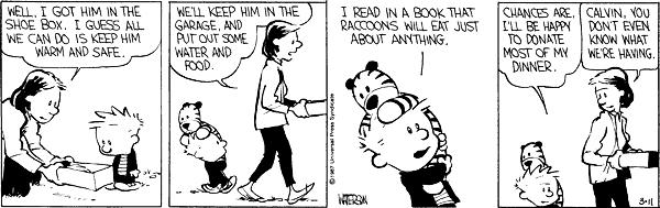 Source: Daily Calvin and Hobbes