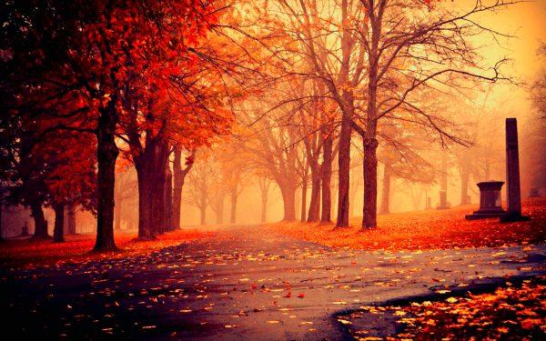 fall-wallpaper-10