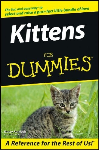 kittensfordummies