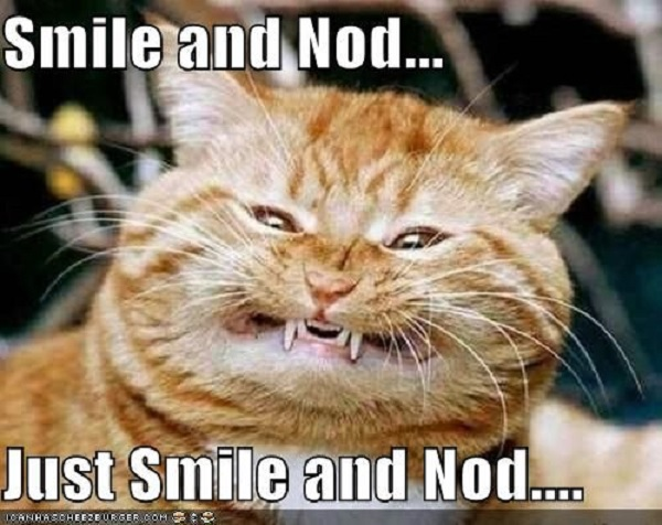 smile-and-nod